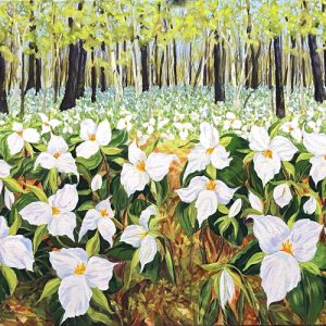 """Trillium Abundance"" Notecards 