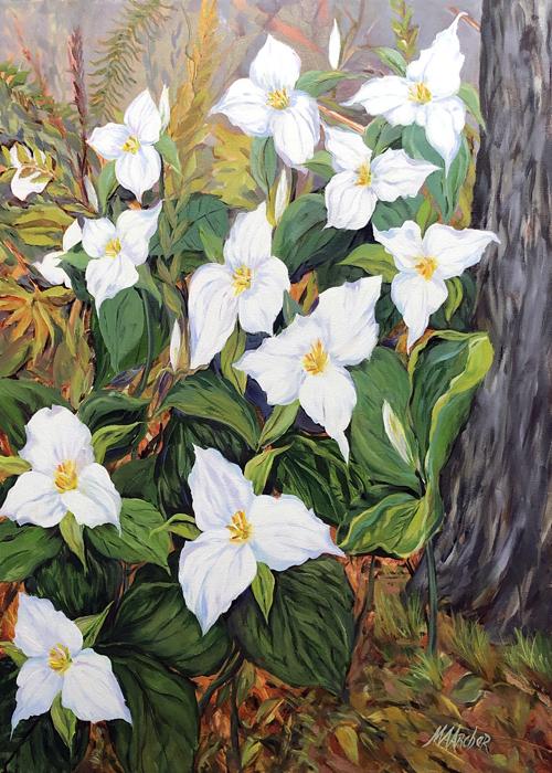 """Trillium Morning"" | Notecard | Mary Ann Archer"