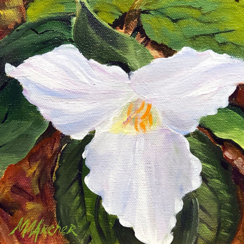 """""""Trillium Solo"""" Notecard   Oil Painting   Mary Ann Archer"""